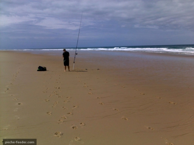 Installation sur la plage pour la pêche en surfcasting