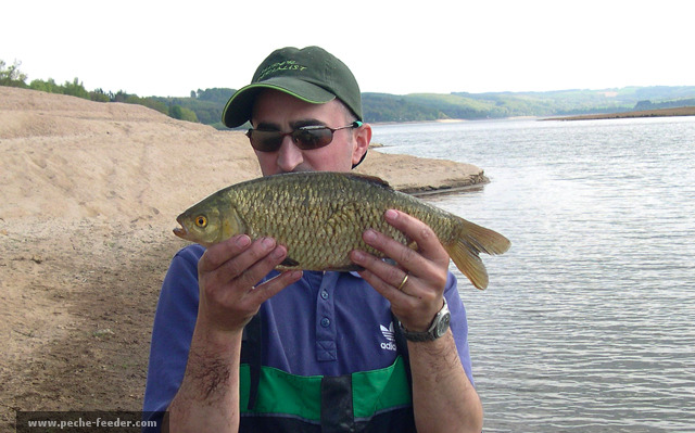 Rotengle du Lac de Pareloup péché au feeder