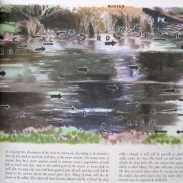Apprendre à lire l'eau d'une rivière en Hiver