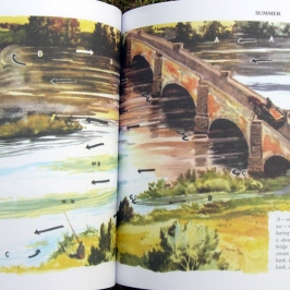 Apprendre à lire une rivière pour la pêche - un dessin de B. Venable