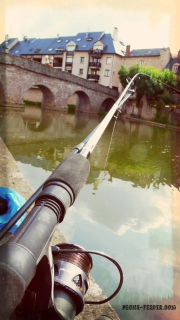 barbeau-feeder-riviere1-effet