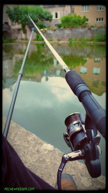 barbeau-feeder-riviere26-effet