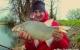 La pêche au feeder vue par une brème