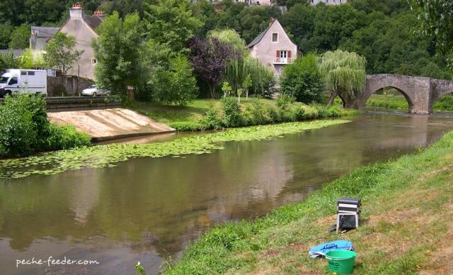 pêche de la tanche en petite rivière