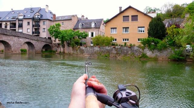 action-riviere-canne-feeder-sensas