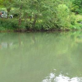 petite-riviere-peche-au-feeder