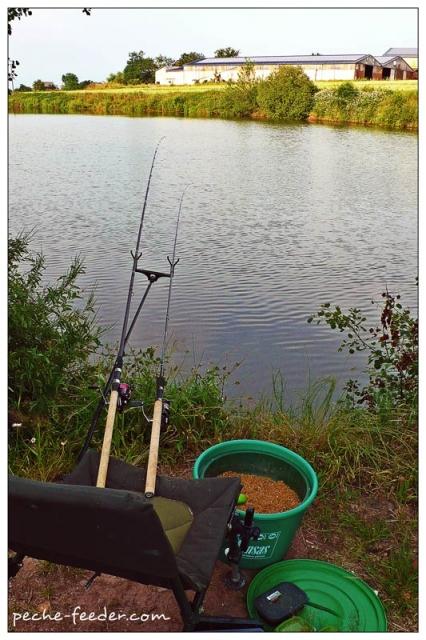 Coup du soir pêche à la carpe