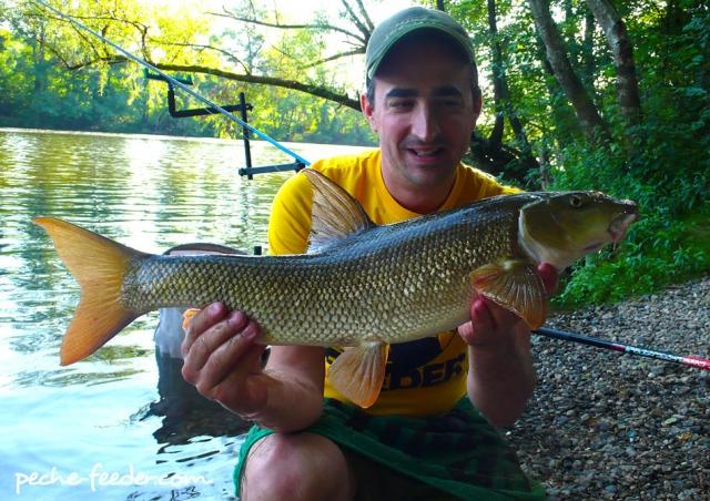 Pêche du Barbeau en rivière