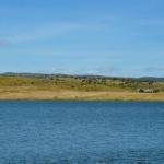 Feeder en Extremadura #2 : le lac de Orellana