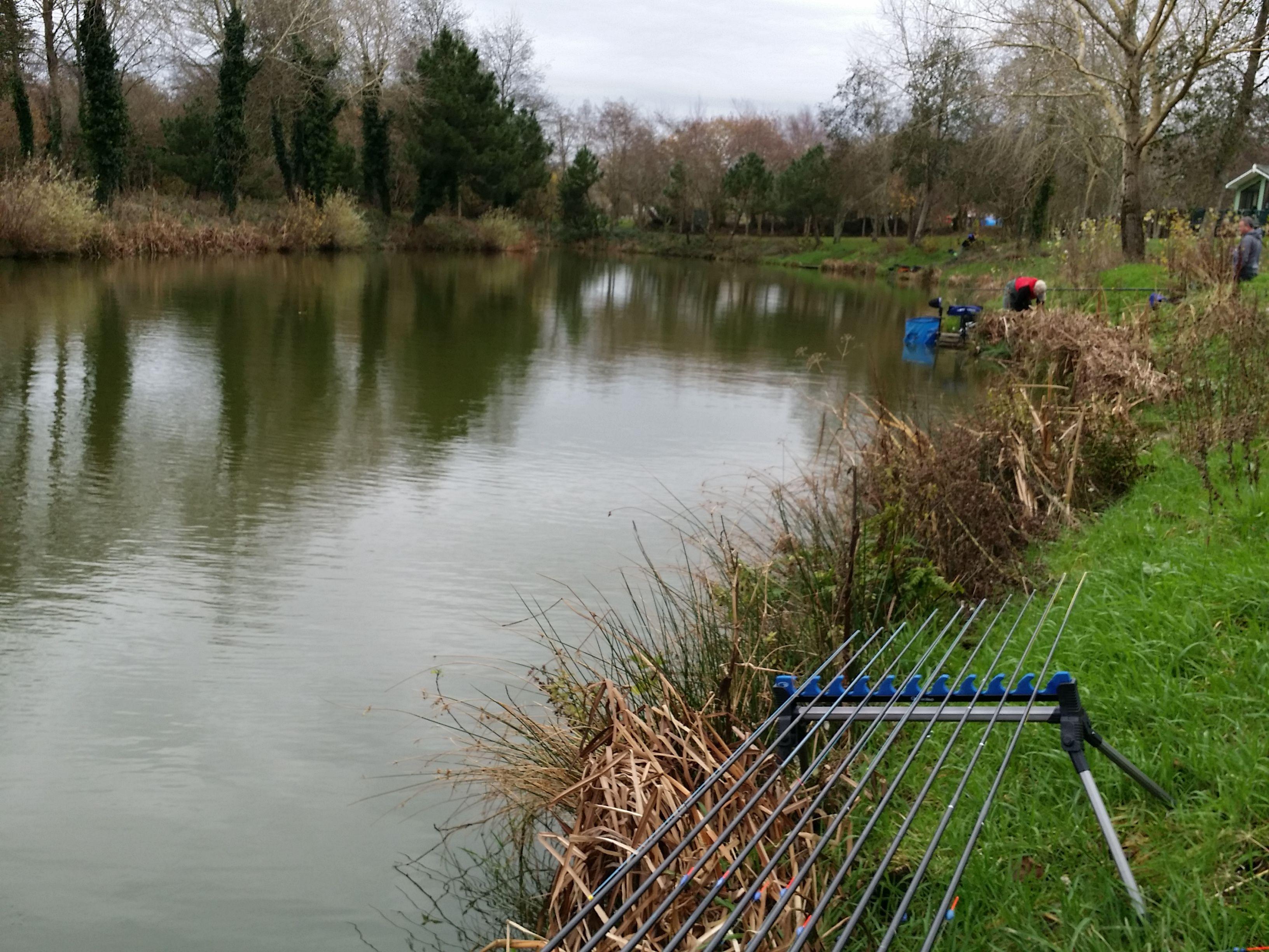 Les cordages pour la pêche sur la rivière de la vidéo-mangeoire