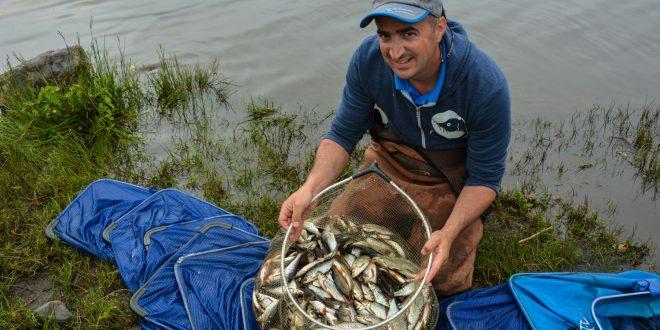 lough-allua-feeder-petits-poissons-12