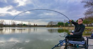 canne-feeder-shimano-beast-master-4