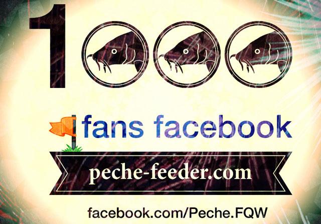 Facebook peche feeder