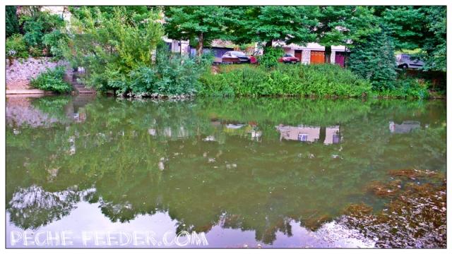 coin-barbeau-feeder-riviere