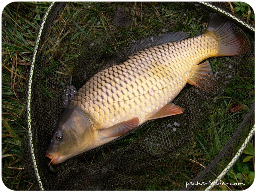 Kan pour la pêche acheter