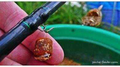 Pellet d'eschage pour le method feeder