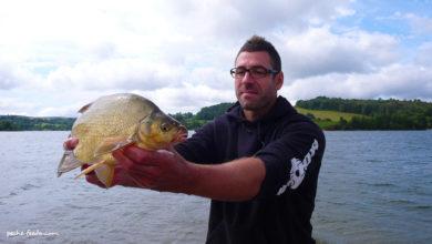Photo de La pêche au feeder avec Julien Malzieu