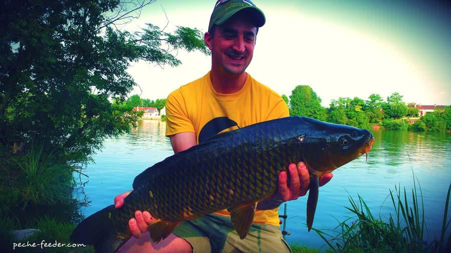 Pêche à la carpe au method feeder