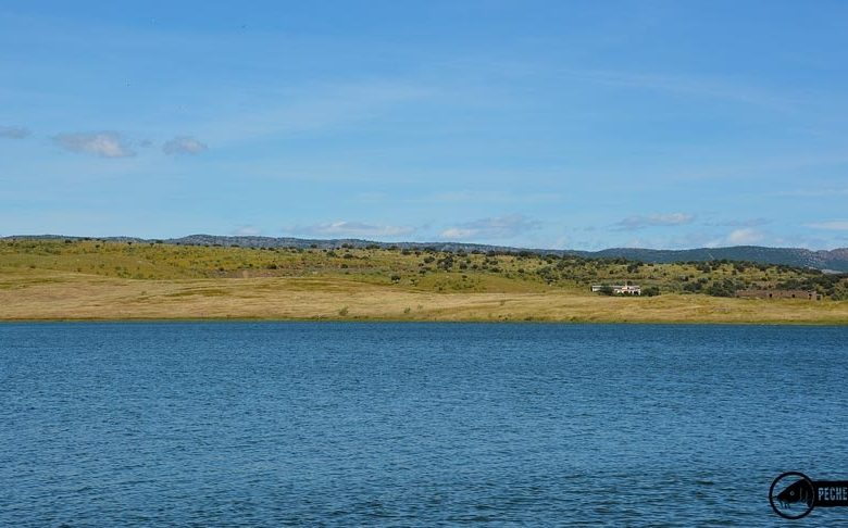 Paysages du lac de Orellana