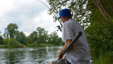 Photo of Canne feeder Shimano Beast Master commercial