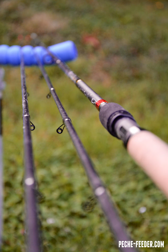canne-shimano-beast-master-commercial-feeder--15