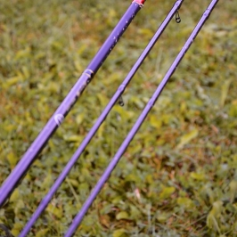 canne-shimano-beast-master-commercial-feeder--17