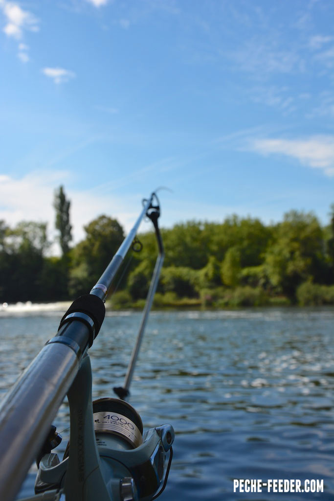 canne-shimano-beast-master-commercial-feeder--4
