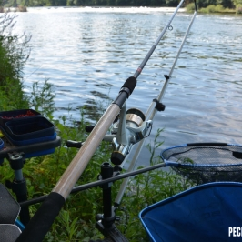 canne-shimano-beast-master-commercial-feeder--5