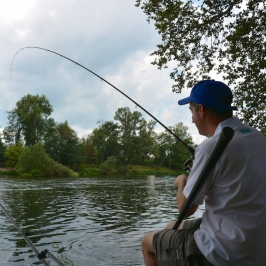 canne-shimano-beast-master-commercial-feeder--8