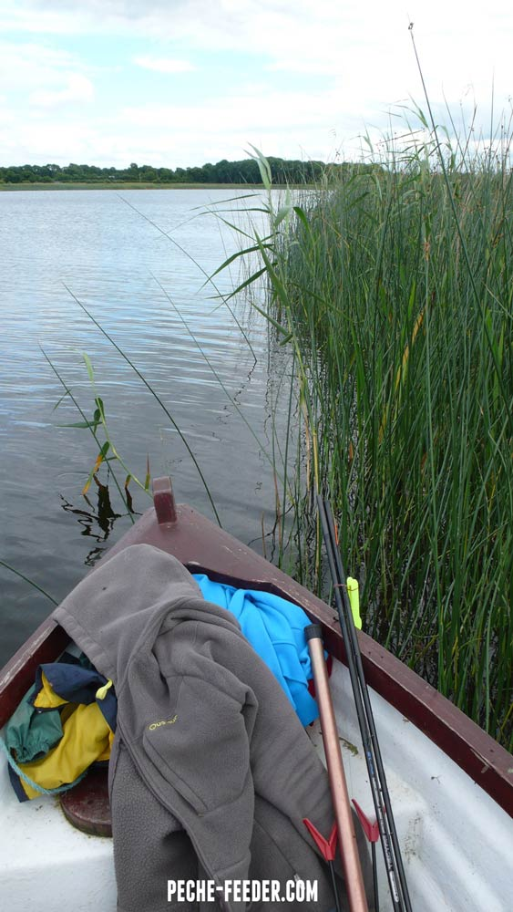 shannon-river-fishing-bream-14