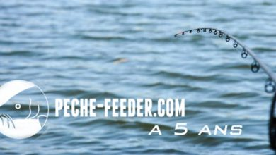 Photo de Peche-feeder.com a 5 ans !