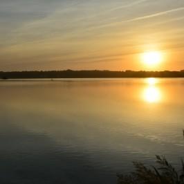marais-d-orx-peche-landes-leve-de-soleil