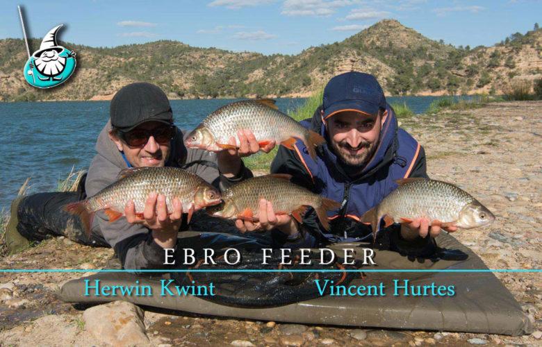 EBRO-FEEDER-ThUBNAIL