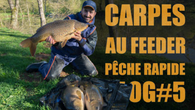Photo de Carpe au feeder en mode pêche rapide VLOG#5