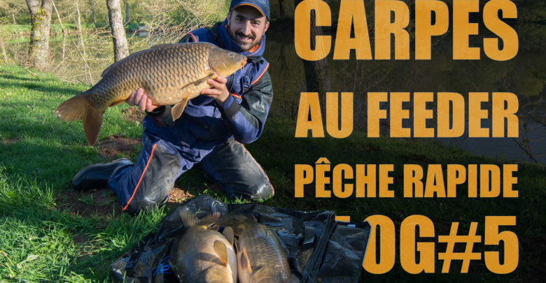 Photo of Carpe au feeder en mode pêche rapide VLOG#5