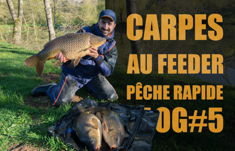 carpe-feeder-peche-rapide-a-la-carpe-site