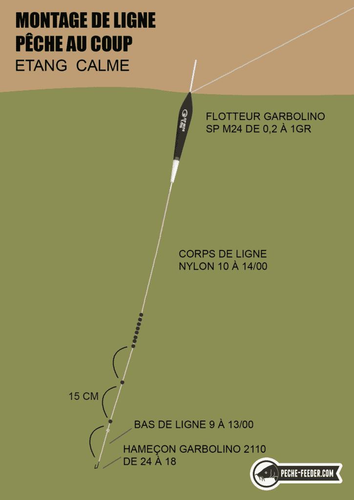Schéma de montage de ligne pour la pêche au coup en étang par temps calme.