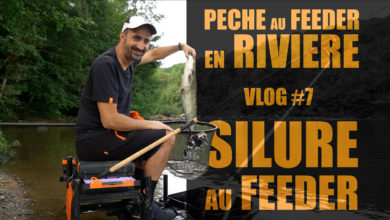 Photo de Pêche au feeder en rivière – Silure au feeder VLOG#7