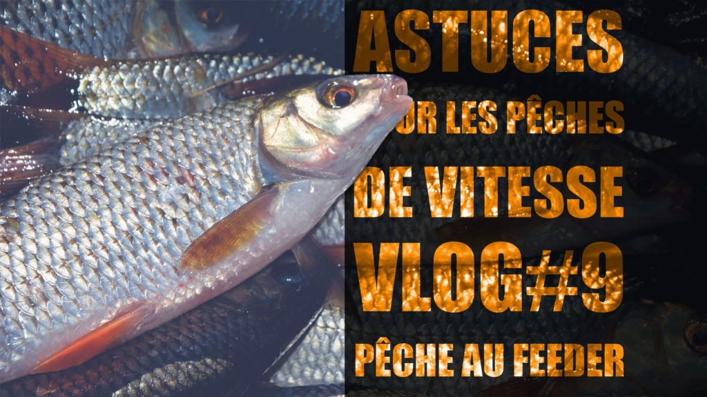 video-peche-vitesse-feeder-2