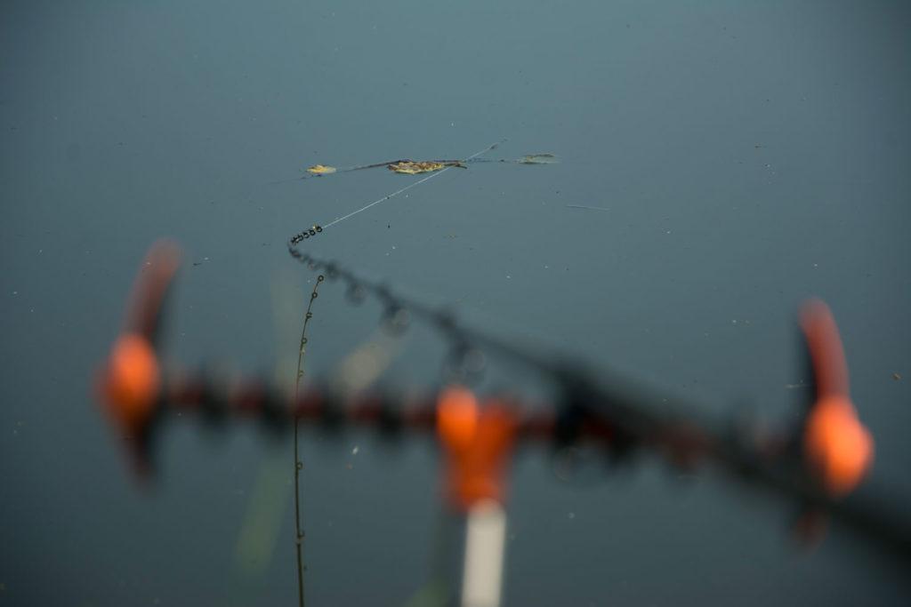 La lecture de la touche sur la pointe du scion est la particularité de cette technique de pêche.
