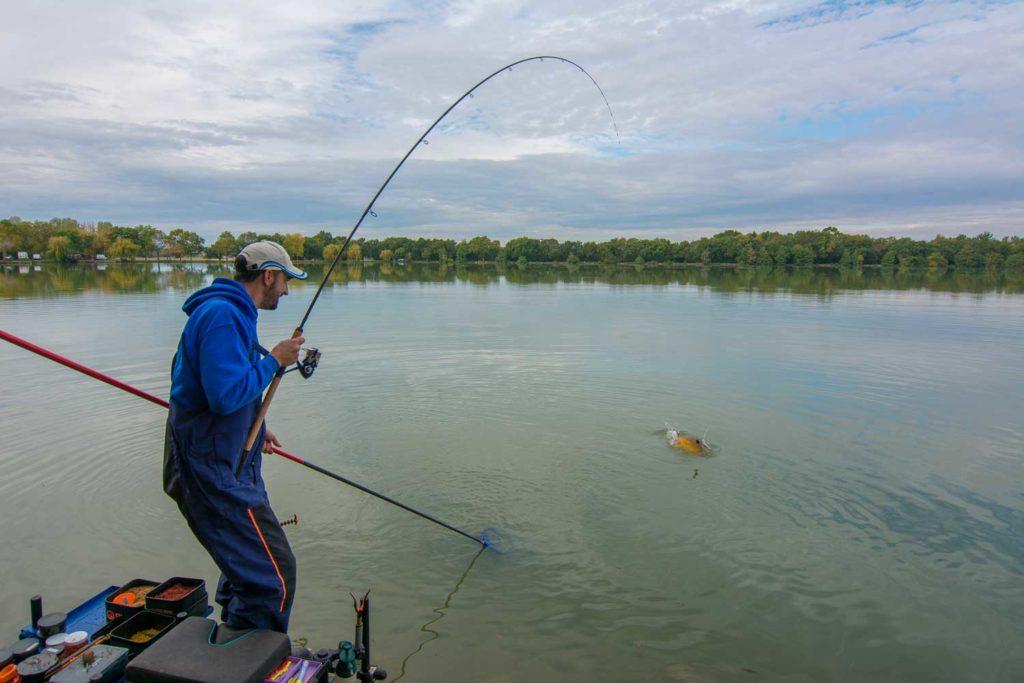 La pêche au method feeder est destinée aux carpes.