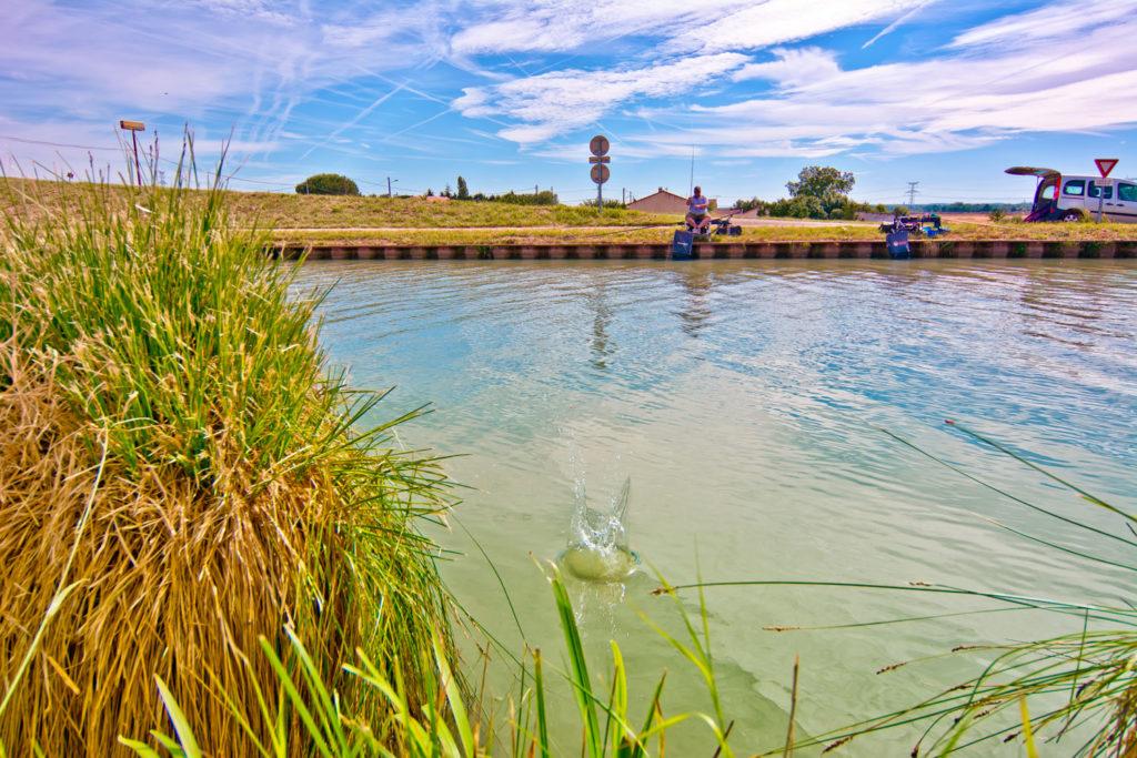 La précision de l'amorçage et donc des lancers est la clef de la réussite de la pêche au feeder.