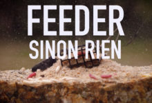 Photo de Feeder sinon rien !