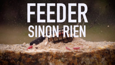 Photo of Feeder sinon rien !