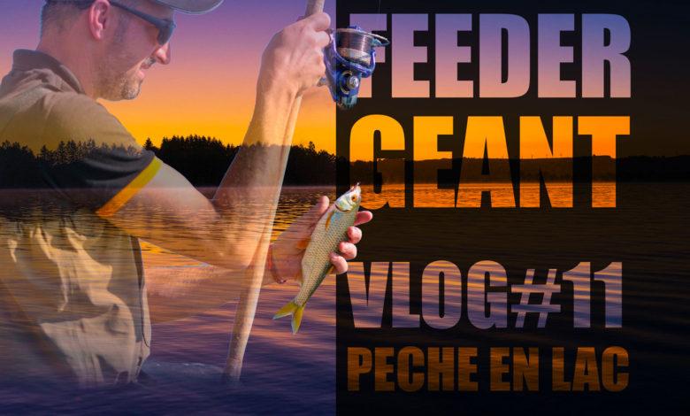 pêche au feeder dans un lac géant