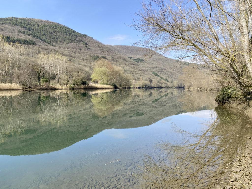 peche-au-feeder-riviere-printemps-6