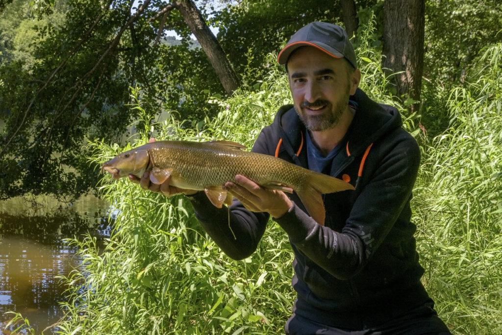 Le barbeau : une belle pêche d'été !
